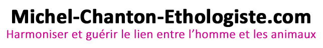 Michel-chanton-ethologiste.com